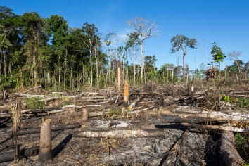 Amazon-fire-climate-change